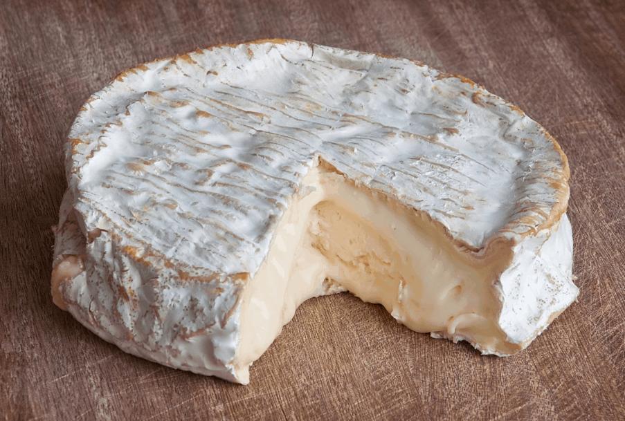 camambert cheese