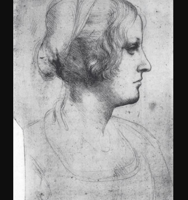Drawing of Cecilia Gallerani