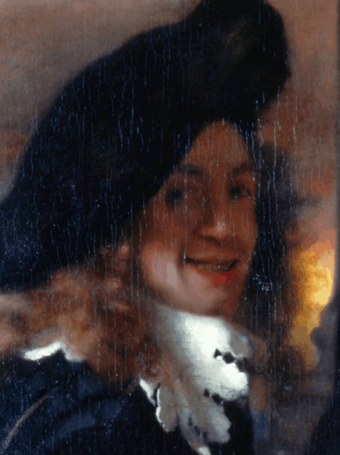 interesting facts about Johannes Vermeer