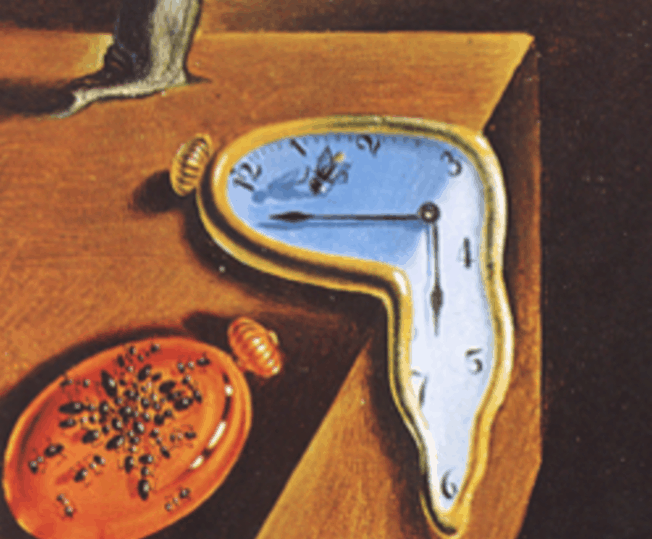 the persistence of memory insects