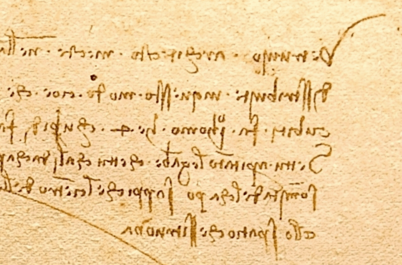 Vitruvian man backward writing