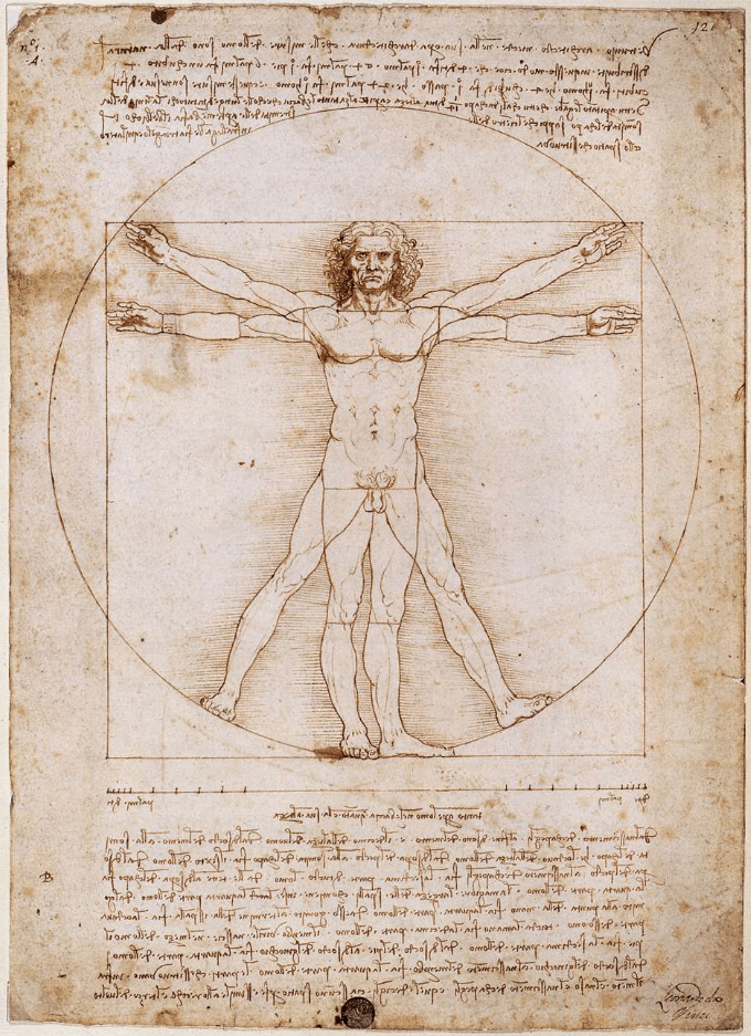 Vitruvian Man facts