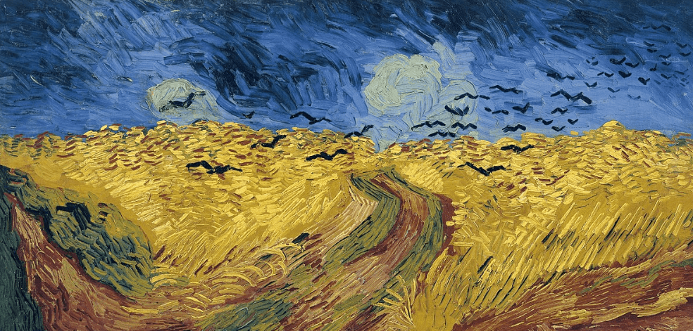 Wheatfiled with crows